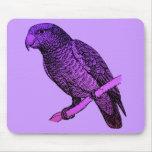 Loro púrpura alfombrillas de ratón