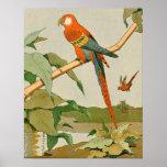 Loro Rojo-y-Verde de la selva del Macaw Póster