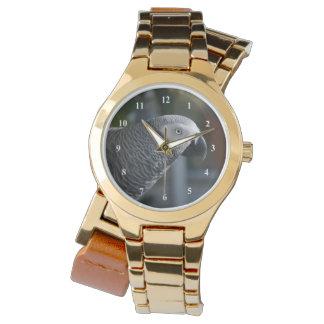 Loro sereno del gris africano relojes de pulsera