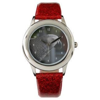 Loro sereno del gris africano reloj