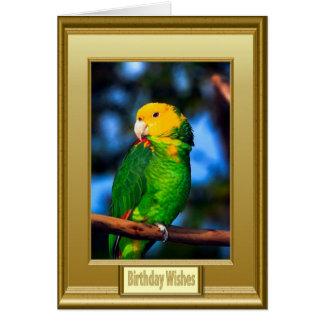 Loro verde capítulo tarjeta de felicitación