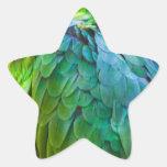 Loro verde pegatinas forma de estrella