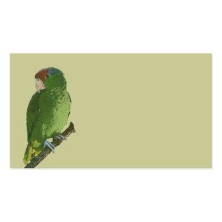 Loro verde plantilla de tarjeta de visita