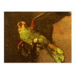 Loro verde, Vincent van Gogh, todavía del vintage Postal