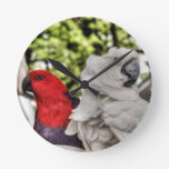Loro y Cockatoo Reloj De Pared