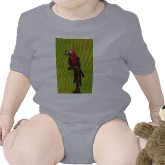 Loro y palmas rojos infantiles traje de bebé