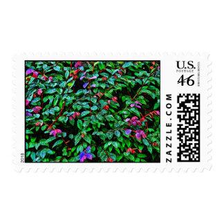 Loropetalum Postage Briefmarken