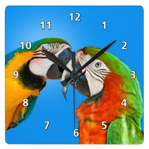 Loros cariñosos reloj cuadrado