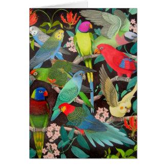 Loros coloridos del mascota de la tarjeta del