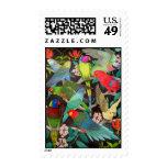 Loros del franqueo de muchos colores timbre postal