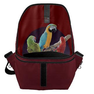 Loros del Macaw Bolsas Messenger