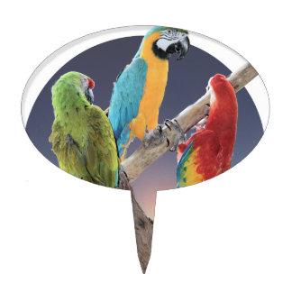 Loros del Macaw Palillos De Tarta