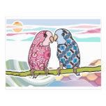 Loros en amor tarjetas postales