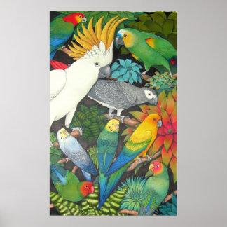 Loros y poster de Bromeliads