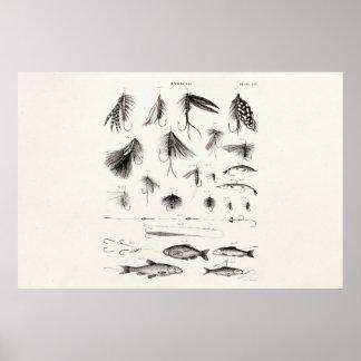 Los 1800s del vintage que pescan la pesca con mosc póster