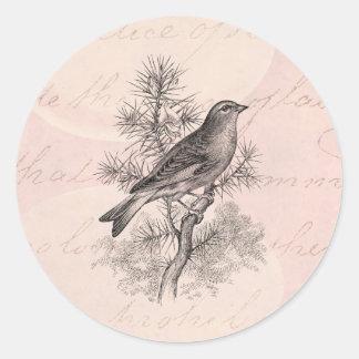 Los 1800s del vintage subió pájaros del pinzón del pegatina redonda