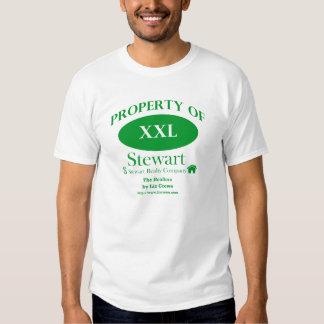 Los agentes inmobiliarios - propiedad de los camisas