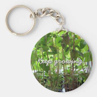 Los almácigos de la planta guardan el crecer llavero redondo tipo pin