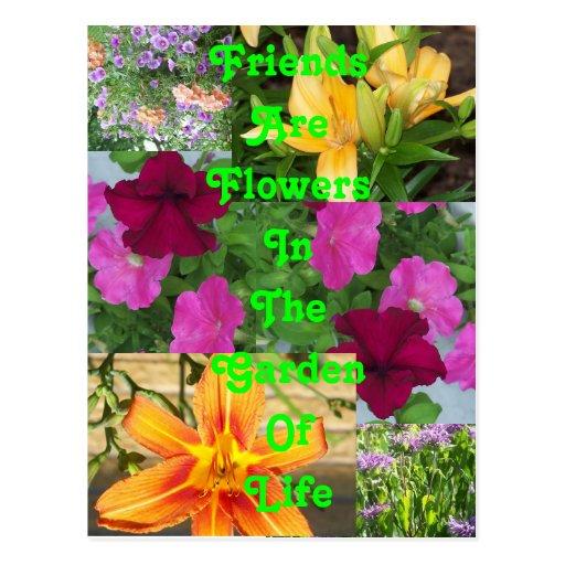 Los amigos son la postal PC78 de las flores   …