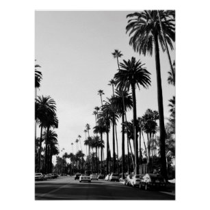 los angeles palm trees posters photo prints zazzle