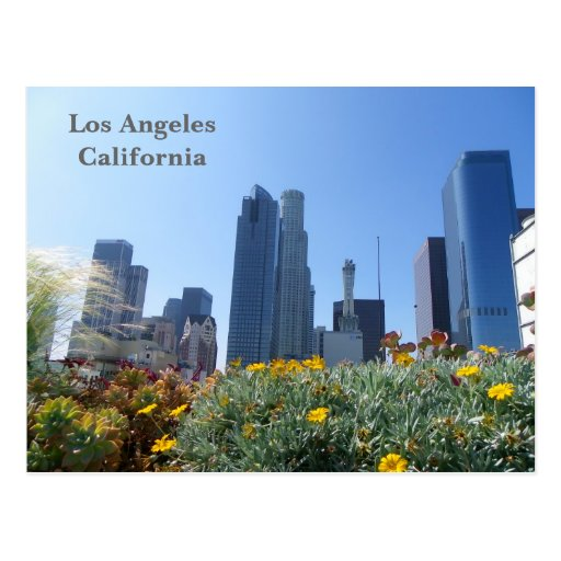 Los Angeles Downtown View Postcard!