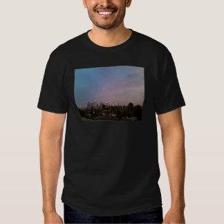 los angeles night sunset downtown, echo park shirts