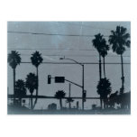Los Angeles Palm Trees Post Cards