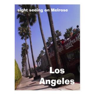 Los Angeles, sight seeing on Melrose Postcard