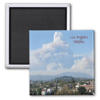 Los Angeles Wildfire Magnet! Day. Magnet