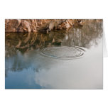 Los anillos en condolencia del agua le agradecen c tarjeton