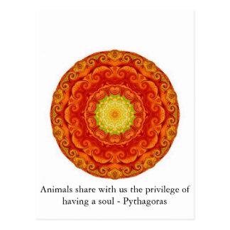 Los animales comparten con nosotros el privilegio tarjeta postal