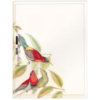 Los animales de la fauna de los pájaros de Sunbird Pizarras Blancas De Calidad
