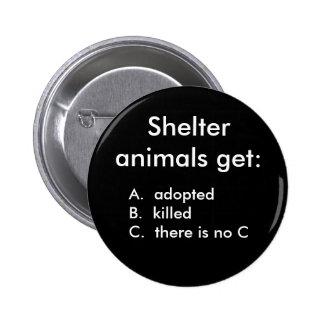 Los animales del refugio consiguen: , adoptedB del Pin