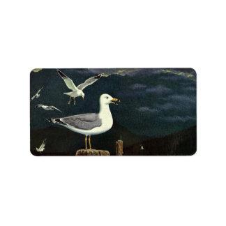 Los animales marinos de los pájaros del vintage, etiquetas de dirección