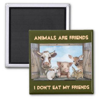 Los animales son amigos imán cuadrado
