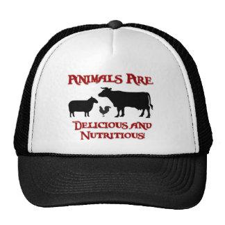 Los animales son deliciosos y nutritivos gorros bordados