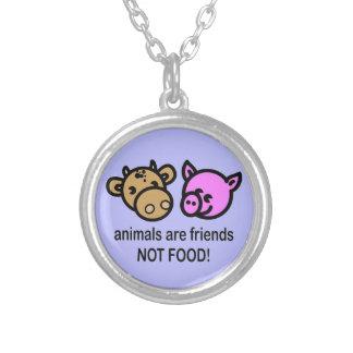 Los animales son nuestro pequeño collar de los ami