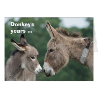 Los años del burro/tarjeta de los oídos