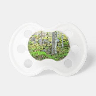 Los árboles altos en el bosque de Finlandia en el Chupetes Para Bebes