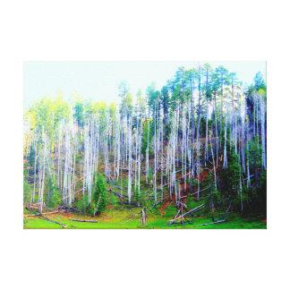 los árboles altos envolvieron la lona lona estirada galerias