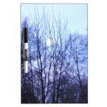 Los árboles blancos del negro de la luna del cielo pizarra