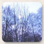 Los árboles blancos del negro de la luna del cielo posavaso