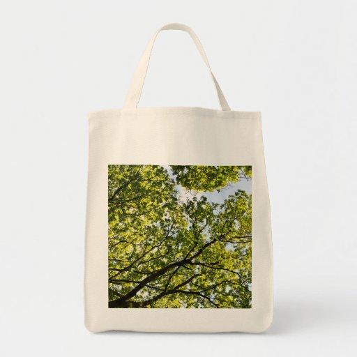 Los árboles bolsas de mano