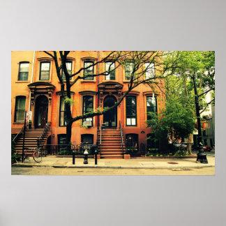 Los árboles crecen en Brooklyn, medio Posters