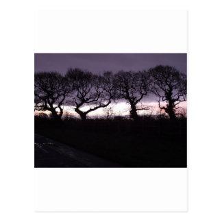 Los árboles de la danza honrada postal