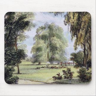 Los árboles de la hermana, Kew cultivan un huerto, Tapetes De Raton