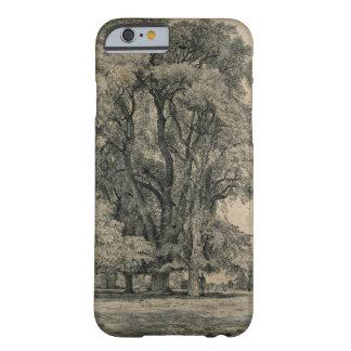 Los árboles de olmo en viejo Pasillo parquean, Funda De iPhone 6 Barely There