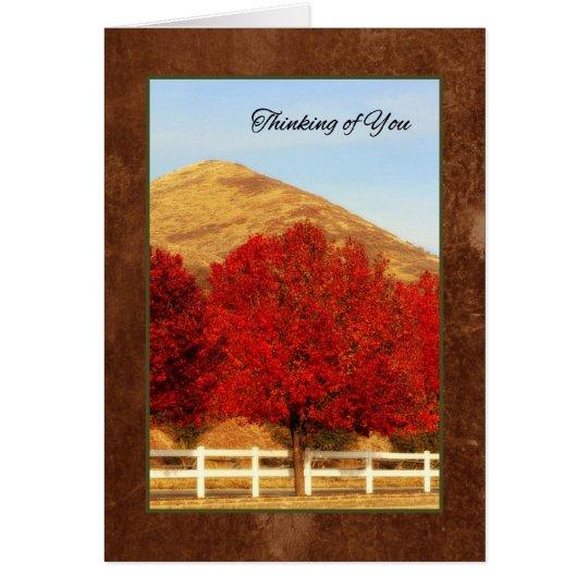 Los árboles del otoño que piensan en usted tarjeta de felicitación