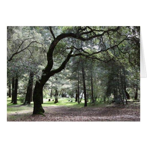 """""""Los árboles doblan para acariciarme… """" Tarjeta De Felicitación"""