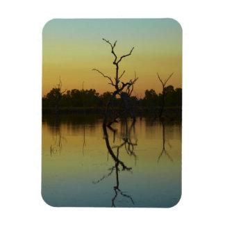 Los árboles muertos reflejaron en la laguna de la  imanes de vinilo
